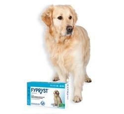 Antiparazitika - Fypryst Spot-on Dog L sol 3x2,68ml (20-40kg)