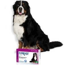 Antiparazitika - Fypryst Spot-on Dog XL sol 1x4,02ml (nad 40kg)