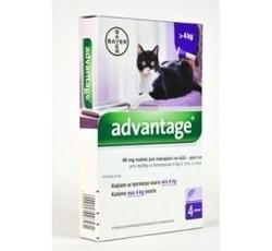 Antiparazitika - Advantage 80 10% 4x0,8ml (pro kočky nad 4kg)