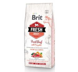 Krmiva - Brit Fresh Dog Beef & Pumpkin Puppy Large