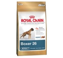 Krmiva - Royal canin Breed Boxer