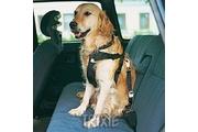 Postroj pes Bezpečnostní do auta Trixie