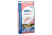 Bosch Dog Reproduction