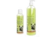 Šampon březový Perfect care KAR
