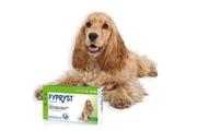 Fypryst Spot-on Dog M sol 3x1,34ml (10-20kg)