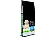 ProPlan Dog Puppy Large Robust