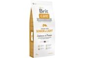 Brit Care Dog Grain-free Senior Salmon & Potato (pro starší psy)