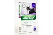 Advantage 80 10% 4x0,8ml (pro kočky nad 4kg)