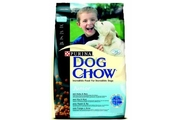 Purina Dog Chow Puppy/Junior Chicken&Rice