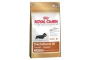 Royal canin Breed Jezevčík Junior