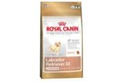 Royal canin Breed Labrador Junior