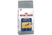 Royal canin  Cyno Energy 4300